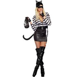 Dreamgirl Sexy Cat Burglar Halloween Costume NWT